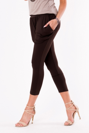 Alladyn brown pants 48020-1